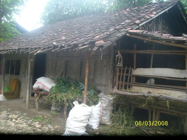 Di rumah bambu inilah Edi saputra bocah cilik penderita hernia tinggal